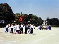 体育祭の模様です。赤組と白組に分かれて玉入れをしています。