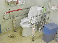 トイレの画像です。間取りが広く、便器の左右に大きな手摺があります。