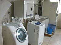 洗濯室の画像です。ドラム式洗濯機が1台。一槽式洗濯機が3台、乾燥機が2台あります。