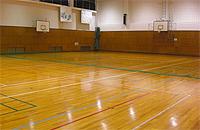 体育館の画像です。パスケットボールのゴールがあります。床はフローリングです。