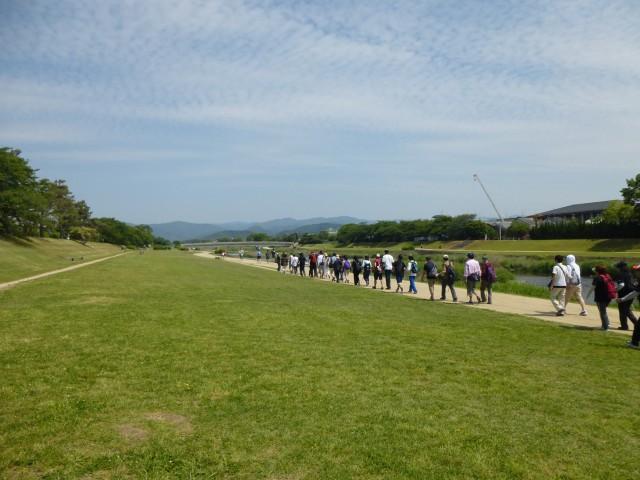 賀茂川を北上中