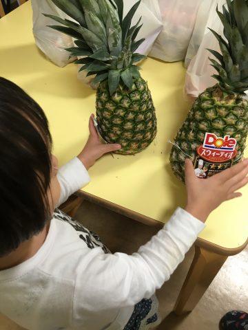 野菜やフルーツをいただきました( ๑❛ᴗ❛๑)۶♡٩(๑❛ᴗ❛๑ )
