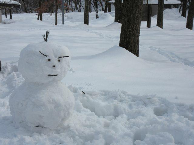 雪遊びを楽しんできました♪(*´▽`*)ノ゛