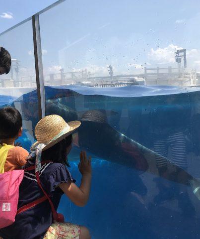 🐬水族館🐬