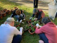 10月の園芸活動