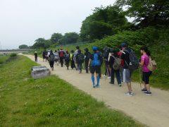 写真1 鴨川遊歩道